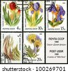 USSR - CIRCA 1986: A stamp printed in USSR, shows feather grass, tulip, iris, knapweed, clematis, circa 1986. - stock photo