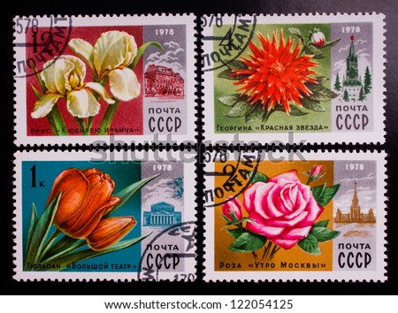 USSR - CIRCA 1978: A stamp printed in USSR shows flowers of different kinds, circa 1978. - stock photo
