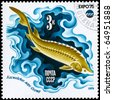 "USSR - CIRCA 1975: A Stamp printed in USSR shows image of a Sturgeon, Caspian Sea from the series ""Oceanexpo 75 Emblem"", circa 1975 - stock photo"