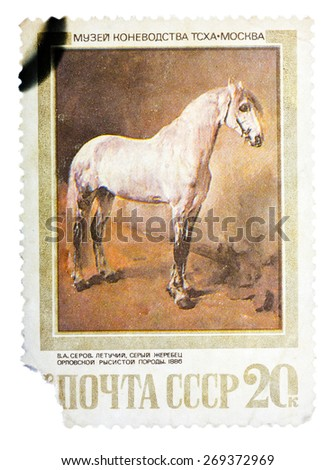 USSR - CIRCA 1988: A stamp printed in USSR, shows Letuchya, a Gray Orlov Trotter Stallion, by V.A. Serov, 1886, series Moscow Museum of Horse Breeding, circa 1988 - stock photo