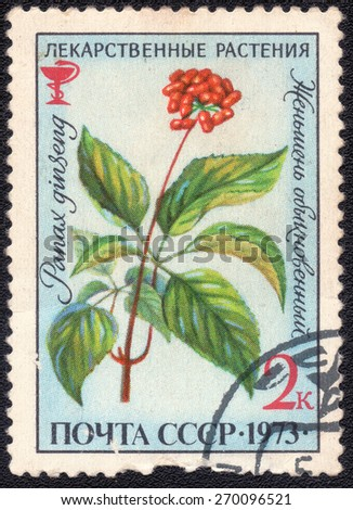 "USSR - CIRCA 1973: A Stamp printed in USSR shows series of images ""Medicinal Plants, circa -1973 - stock photo"