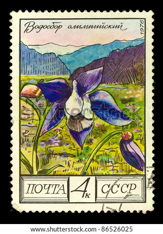 "USSR - CIRCA 1976: A Stamp shows image of a Pasqueflower with the designation ""Olympic columbine"", series, circa 1976"