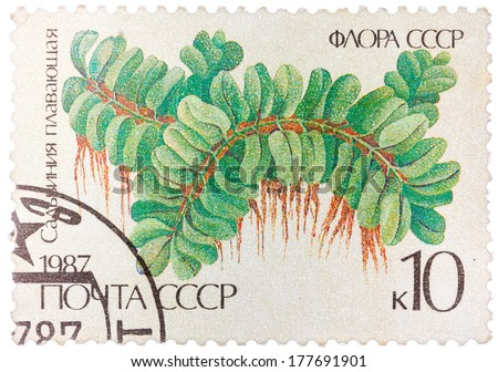 USSR - CIRCA 1987: Stamp printed in the USSR shows Floating Salbiniya, circa 1987 - stock photo