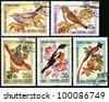 USSR - CIRCA 1981: Stamp printed in USSR shows songbirds, circa 1981. - stock photo