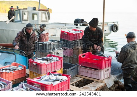 UST-BARGUZIN, RUSSIA - JUNE 21, 2010: Unidentified fishers of a local fishing crew untangle their nets and put the catch into boxes. At Baikal villages fishing is the most popular source of income.   - stock photo