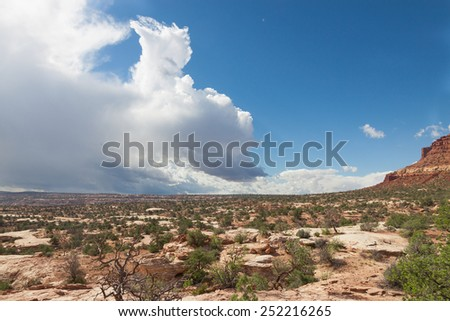 UT-Canyonlands National Park-Maze District-on the way to the Dollhouse area - stock photo