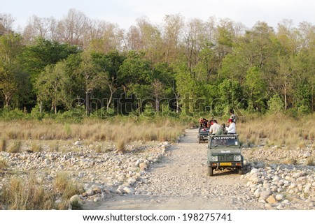 UTTRAKHAND, INDIA-May 25: Tourist waiting on Safari jeeps in the river bed of Bijrani forest for the sighting of tiger on May 25, 2014 in Jim Corbett, Uttrakhand, India. - stock photo