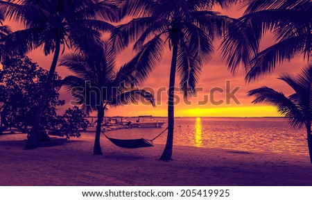 vacation, beach, summer and leisure concept - silhouettes of coconut trees with hammock on the beach, purple sunset view - stock photo