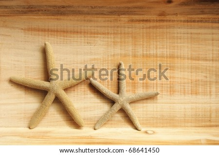 vacation concept with star fish or shellfish and copy space on wood texture - stock photo