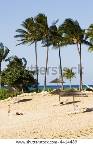 Vacationers relax in the sun at a tropical beach with palm trees. - stock photo