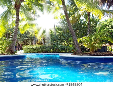 Vacations in the tropics by the pool. The sun's rays shine through the leaves of palm trees - stock photo