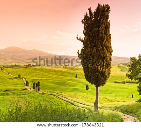 Val d'Orcia , - stock photo