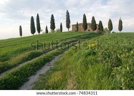Val d'Orcia Area