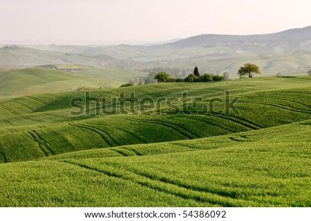 Val d'Orcia - Tuscany - stock photo