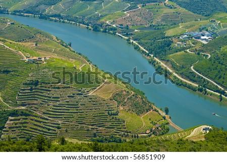 Vale do Alto Douro - stock photo