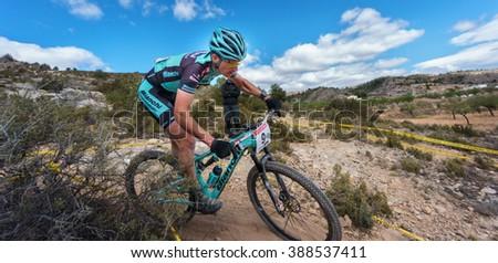 VALENCIA - MARCH 6: Gerhard Kerschbaumer Hugo Drechou rider participates in international Chelva MTB-XCO competition in Chelva on march 6, 2016 in Valencia, Spain - stock photo