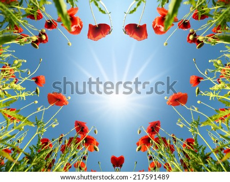 Valentine as heart with poppies (February 14, love)  - stock photo
