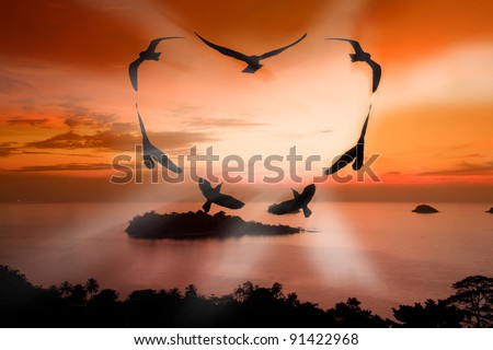 Valentine bird - stock photo