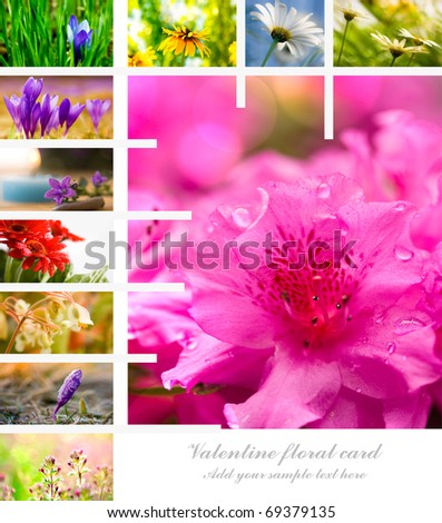 valentine flower collage with copyspace for text - stock photo
