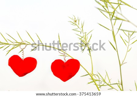 Valentine love symbol hanging on a tree isolated in white background - stock photo