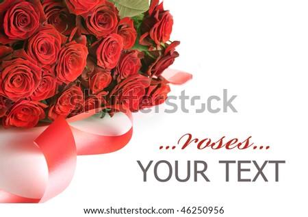 Valentine Roses - stock photo