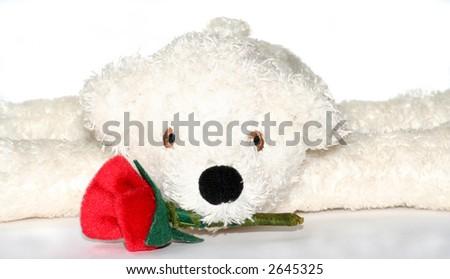 Valentine Teddy - stock photo