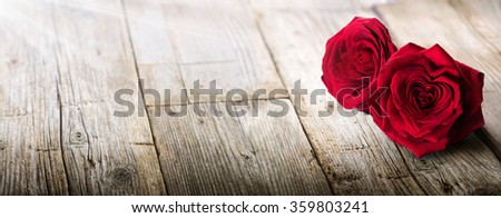 Valentines Card - Sunlight On Two Roses In Love  - stock photo