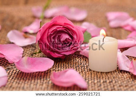 Valentines Day background,-pink rose petals with candle mat texture - stock photo