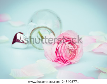 Valentines day card with pink rose and heart on blue background, toning - stock photo