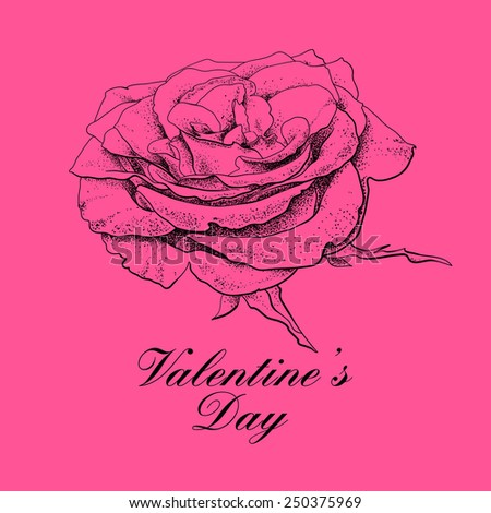 Valentines day design with rose flower.  - stock photo