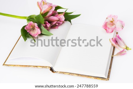 Valentines day, Mothers day composition. Love diary and fresh spring flowers. White background and copy space - stock photo