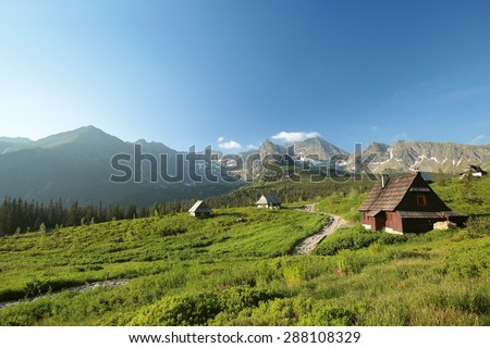 Valley in the Polish Tatra mountains at dawn. - stock photo