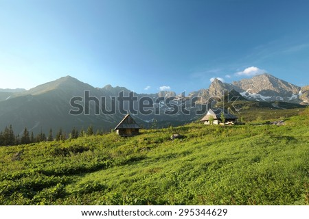 Valley in the Tatra Mountains. - stock photo