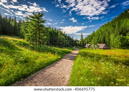 Valley in the Tatras mountains at sunset, Poland - stock photo