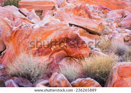 Valley of Fire State Park near Las Vegas, Nevada.   Red with divorce rock resembling a lion with open mouth - stock photo