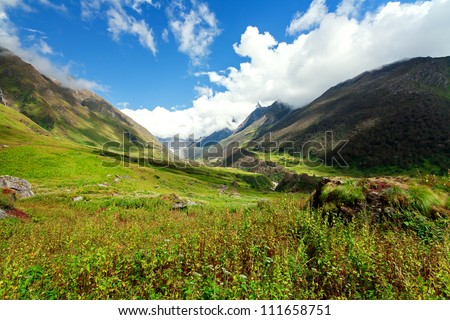 Valley of Flowers national park in the Himalayas, India. Beautiful alpine valley high in the mountains, early autumn. - stock photo