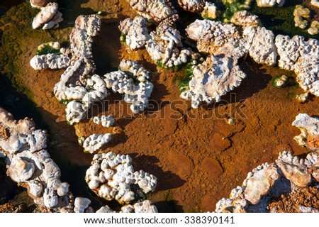 Valley of hot springs near Hveragerdi, hot spring closeup, Iceland - stock photo
