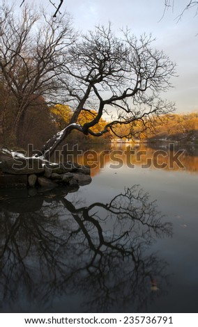 Van Cortlandt park at daylight in the County of the Bronx, New York. - stock photo