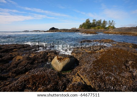 Vancouver Island. Evening low tide on the Pacific beach, wet sand and puddles - stock photo