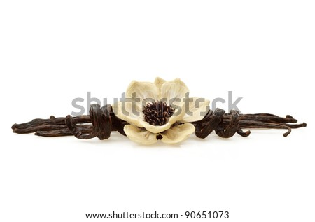 Vanilla bean pods with wood flower made from natural elements on white background - stock photo