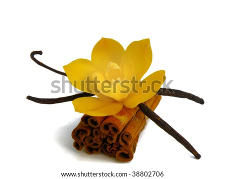 vanilla beans, orchid and cinnamon bark isolated on white - stock photo