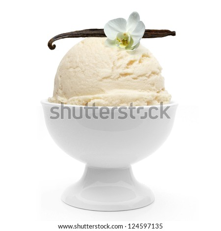 Vanilla ice cream in bowl with vanilla stick and flower on white background - stock photo