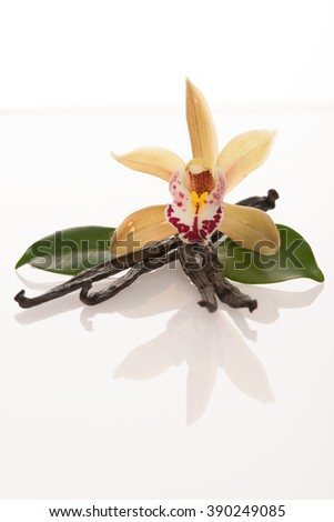 Vanilla pods and orchid flowers isolated on white background - stock photo