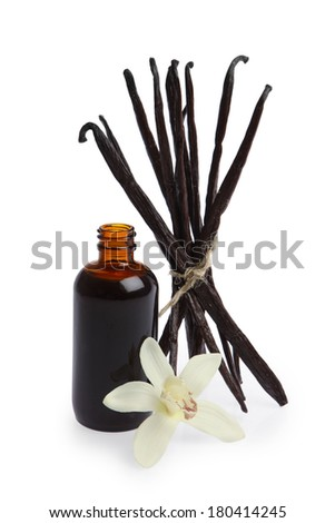 Vanilla pods, bottle of extract and orchid - stock photo