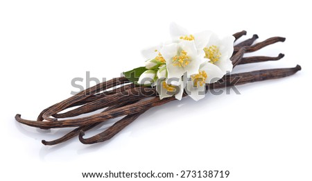 Vanilla pods with jasmine - stock photo