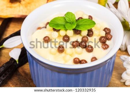 Vanilla yogurt with chocolate - stock photo