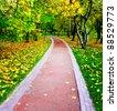 vanishing alley in beautiful autumn park - stock photo