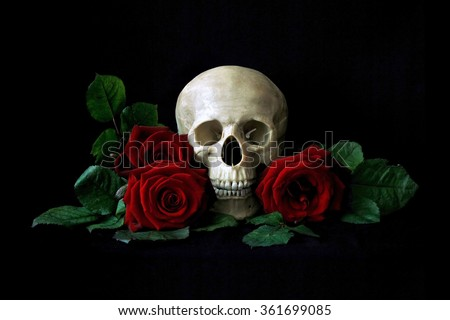 Vanitas. Human skull with red roses isolated over black bagkground. Gothic still life. Book or halloween design - stock photo