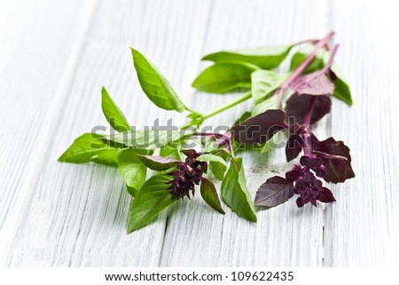 varied basil leaves on kitchen table - stock photo