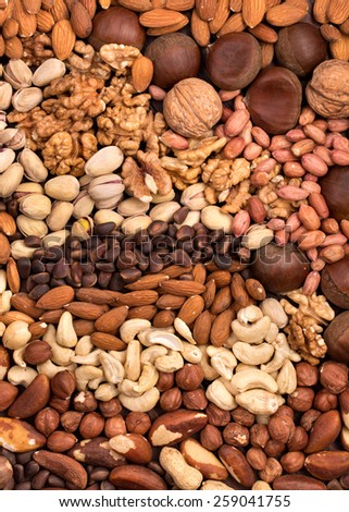 Variety edible nuts background - stock photo